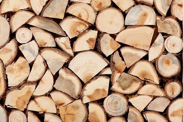 Gỗ huỳnh đàn là gỗ gì?