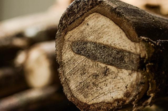 Cách nhận biết gỗ huỳnh đàn như thế nào?